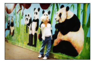 Zoo_038_copy